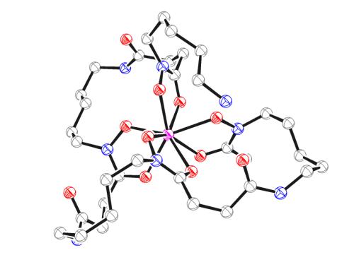 Comparison of the octadentate bifunctional chelator DFO