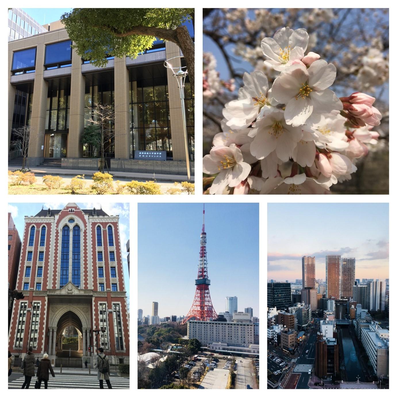 Japan (c)LoanTran